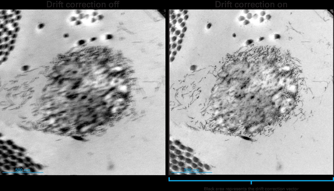 Drift correction compensates for skin cell sample motion