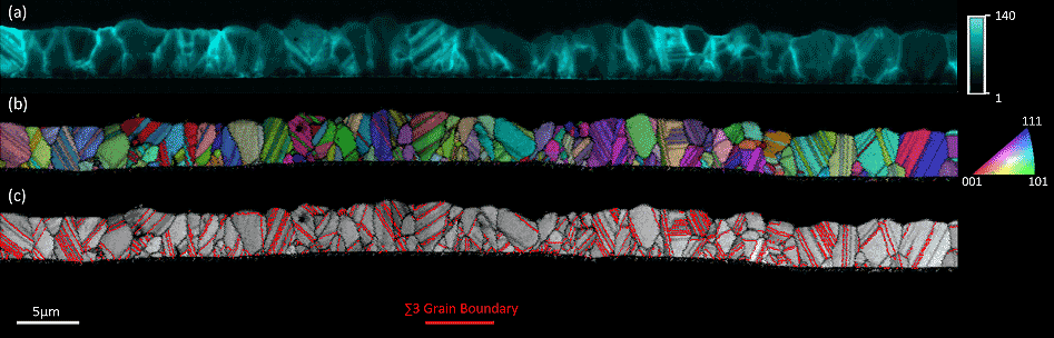 Electrical activity of grain boundaries in CdTe solar cell