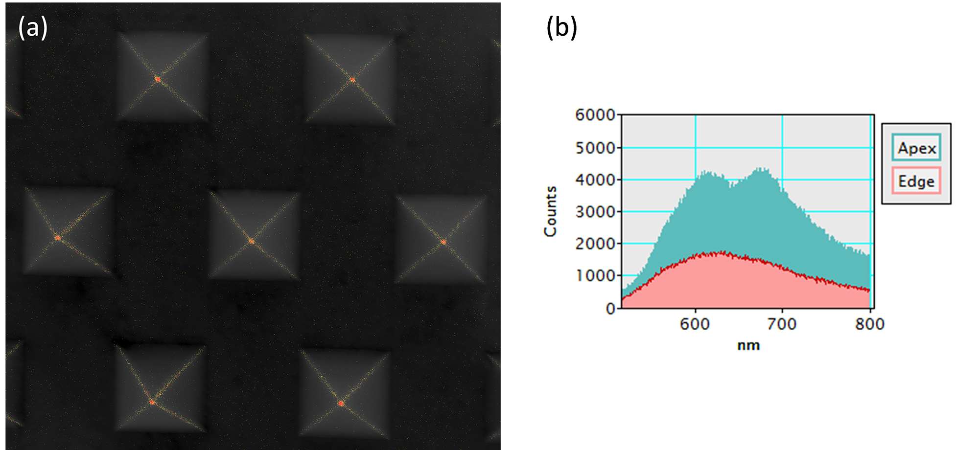 Surface plasmon resonance modes