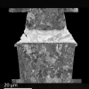 SEM Specimen Preparation