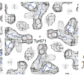 First 3.4 Å TRPV1 structure solved by cryo-EM