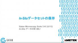 GMS 3.4におけるIn-Situデータの取り扱い:In-Situデータセットの保存
