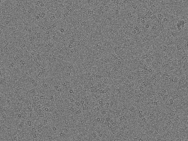 K2 Summit 300 kV low-dose image