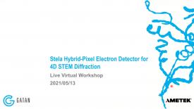 Live Virtual Workshop: Stela Hybrid Pixel Electron Detector for 4D STEM Diffraction