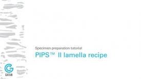 采用PIPS II系统进行FIB样品清洗的设置过程教程;