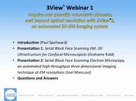 3View 神经科学网络研讨会