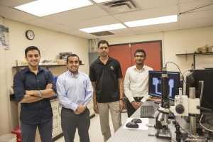 Nanomaterials, Mechanics and MEMS Laboratory