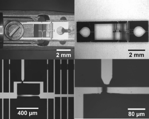 Electron Beam Induced Artifacts During In-Situ TEM