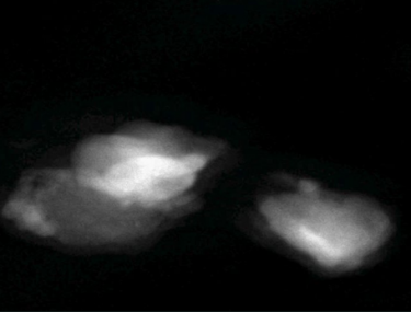 星际尘埃粒子的 HAADF 像