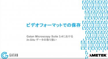 GMS 3.4におけるIn-Situデータの取り扱い:In-Situデータセットからのビデオファイルの保存
