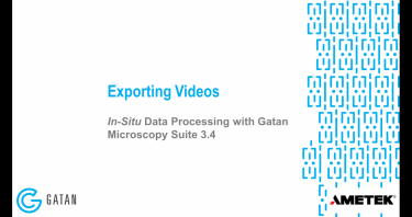 In-situ data processing with GMS 3.4: Exporting videos from in-situ datasets