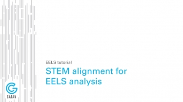STEM alignment for EELS analysis