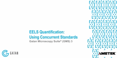 EELS Quantification: Using Concurrent Standards