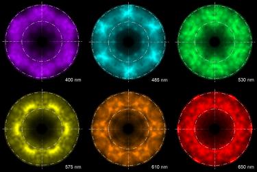 Cathodoluminescence Explained. Episode 2: Understanding Micro-LED Arrays